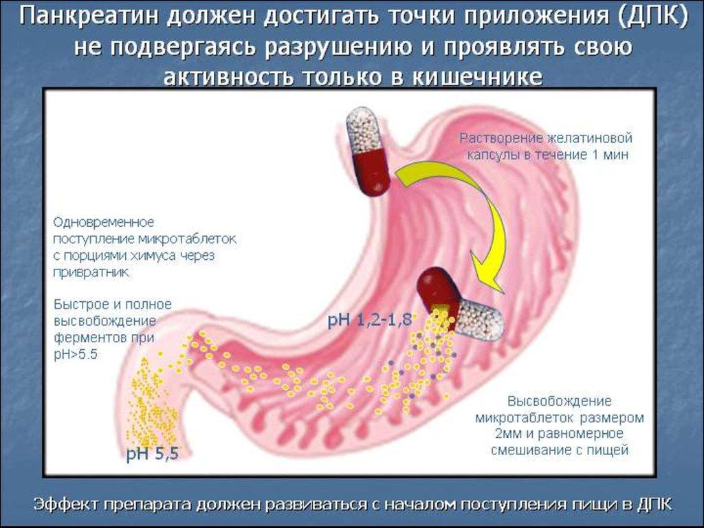 Панкреатит гастродуоденит лечение