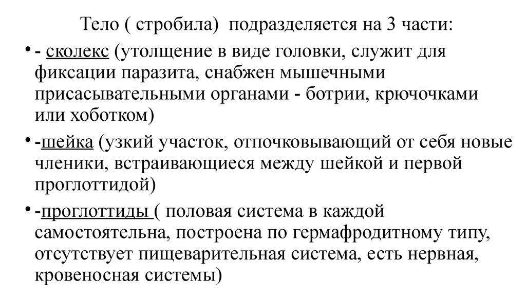 Сколекс