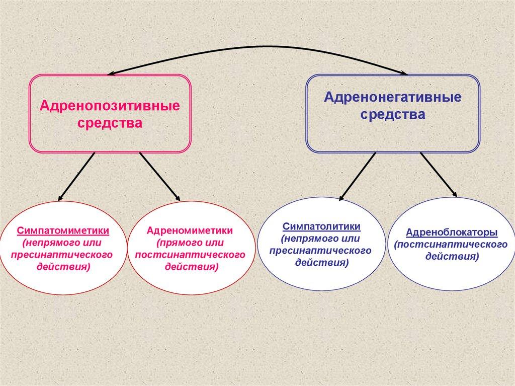 Препараты для повышения потенции в аптеках минска