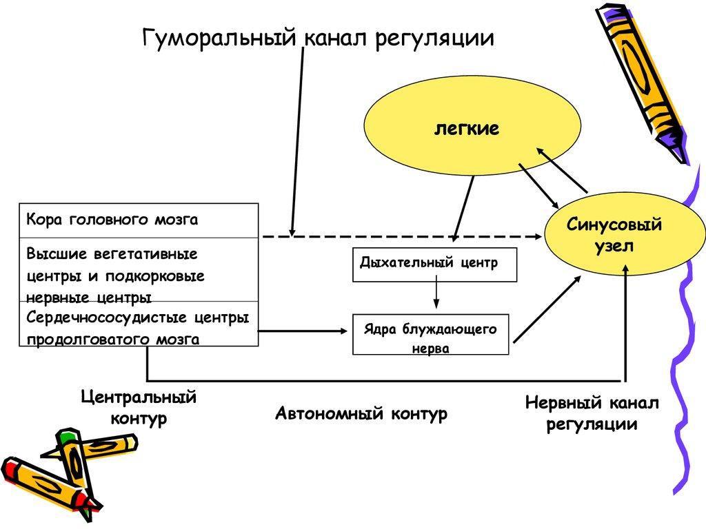 Метрополитен спб строительство схема