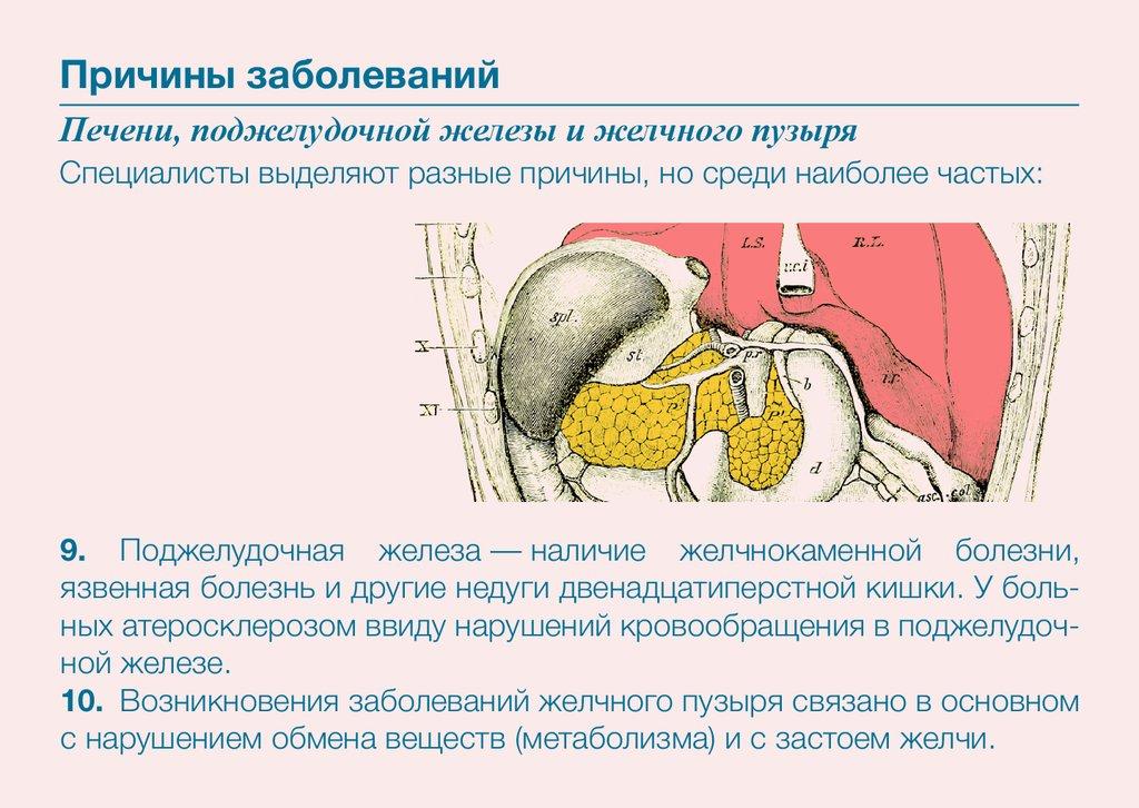 Можно ли пить алкоголь при циррозе