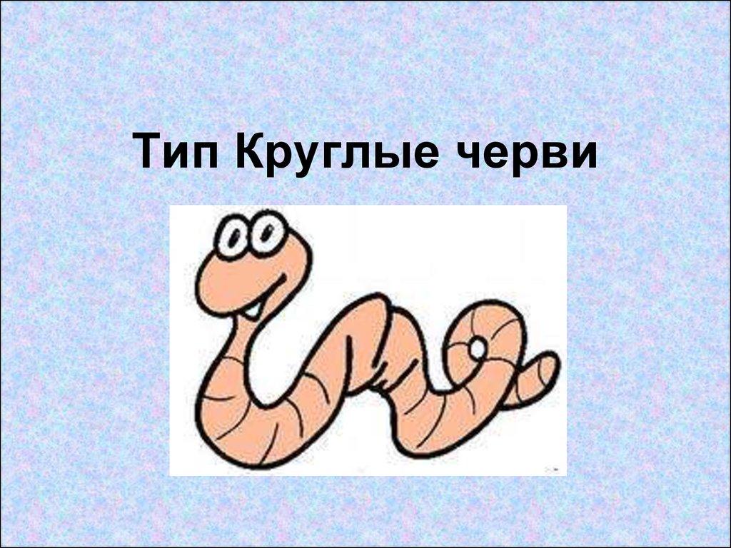 круглые черви паразиты человека