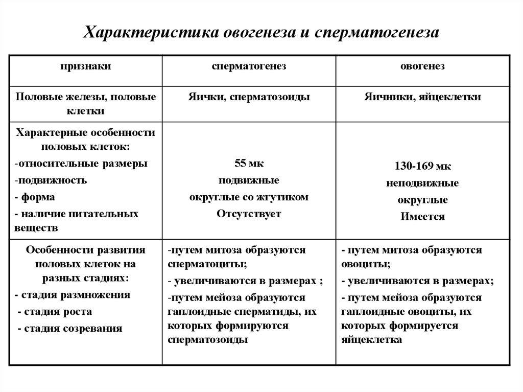 trahaet-svoyu-sosedku-v-obshage