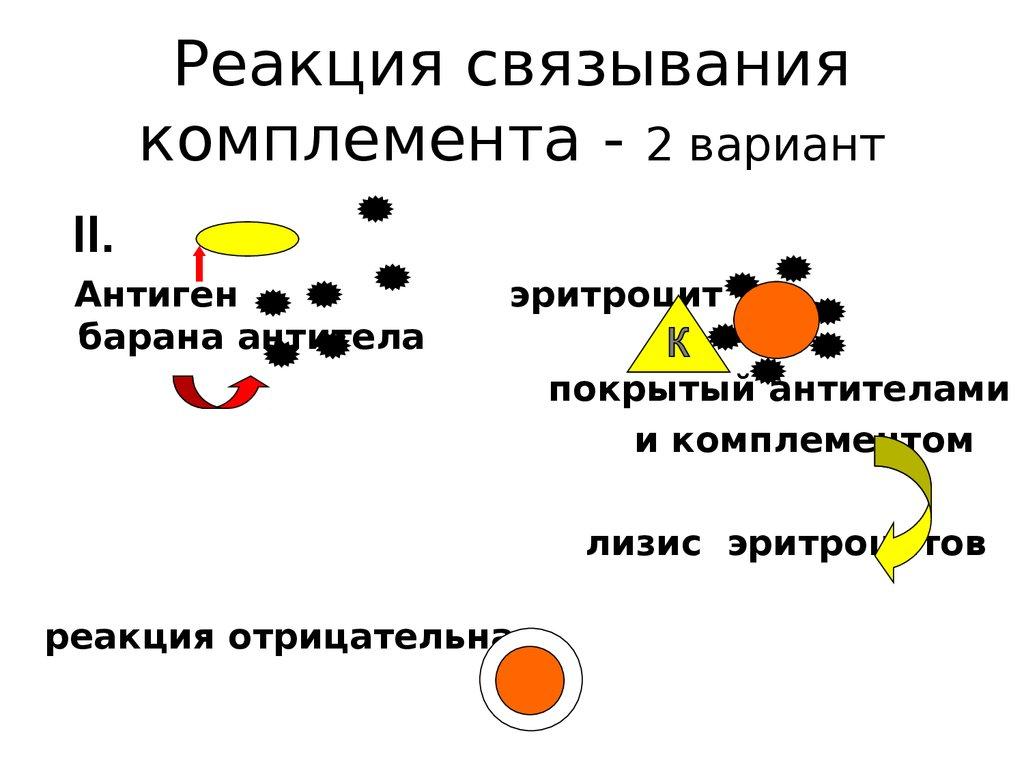 иммуно статус