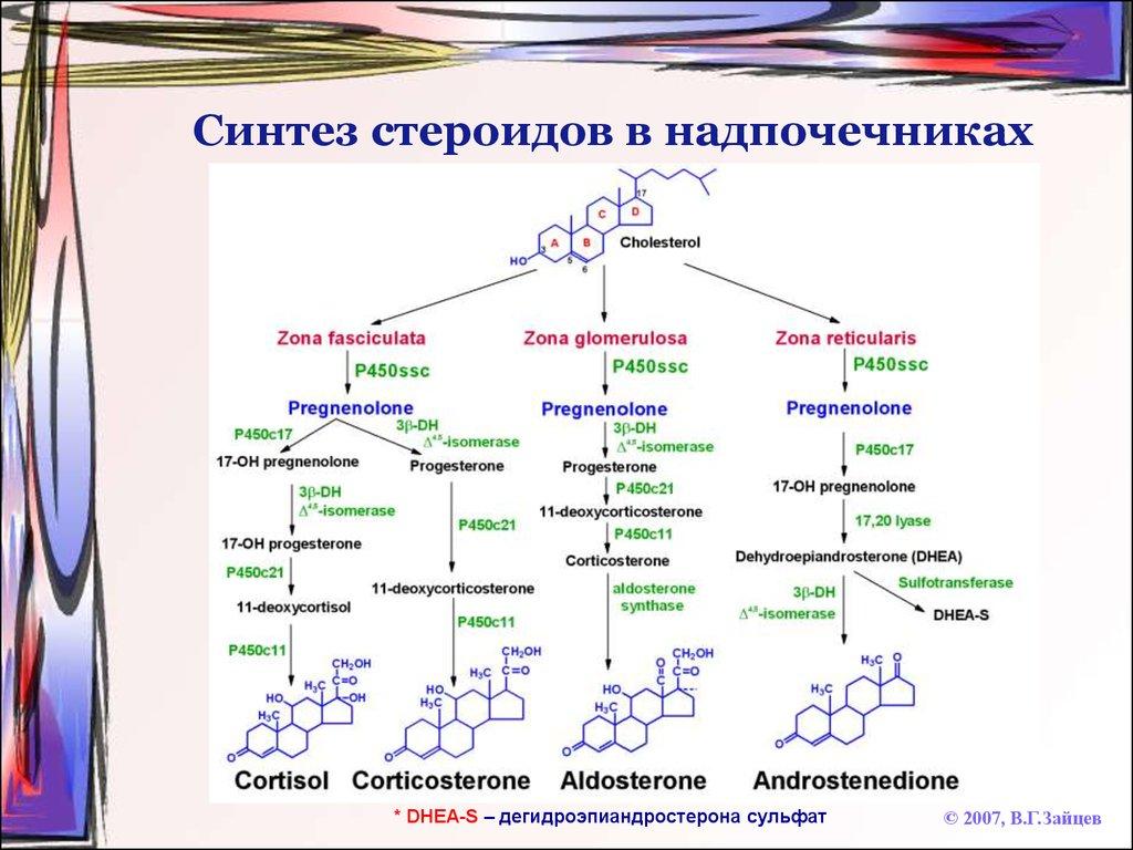 Атеросклероз сонных артерии и шум в ушах