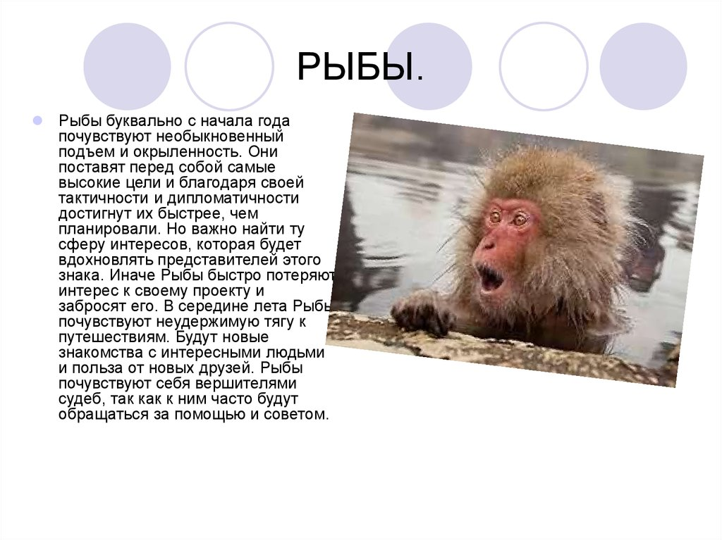 Гороскоп рыб рожденных в год обезьяны
