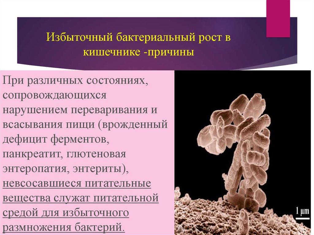 Как лечить бактериальную инфекцию кишечника