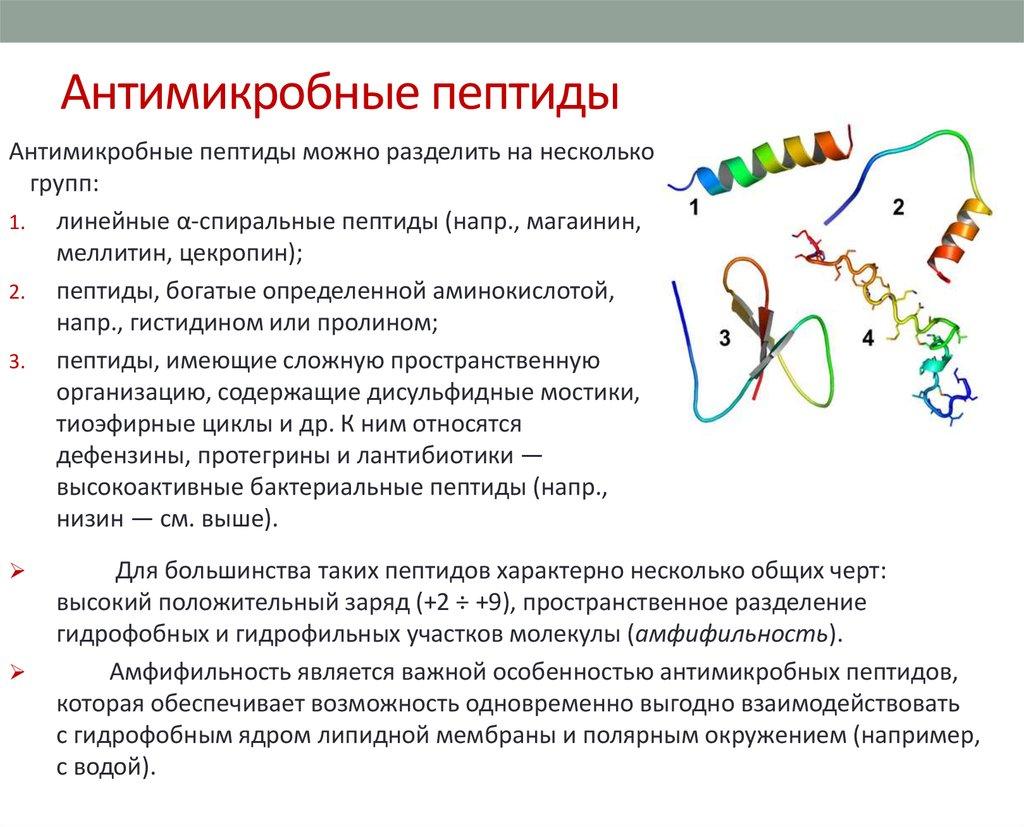 природные аналоги статинов