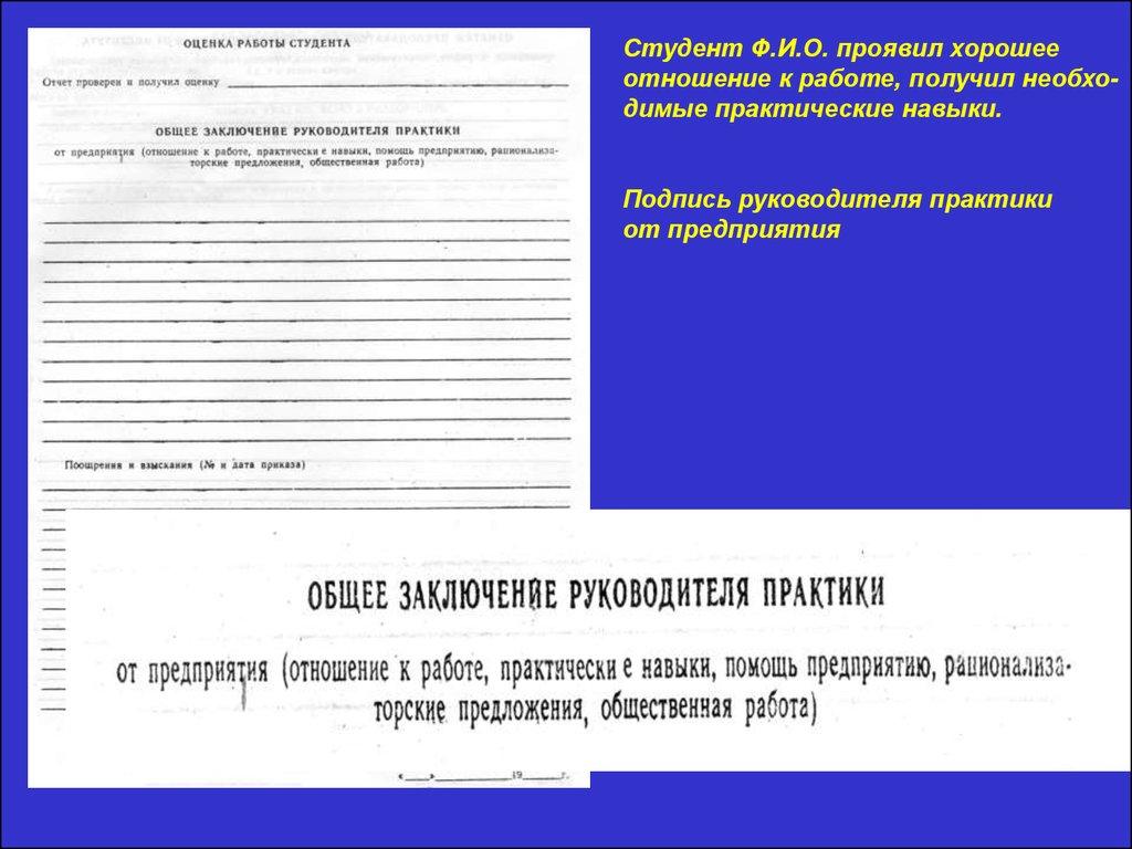 Отчет по юридической практике в страховой компании МСК