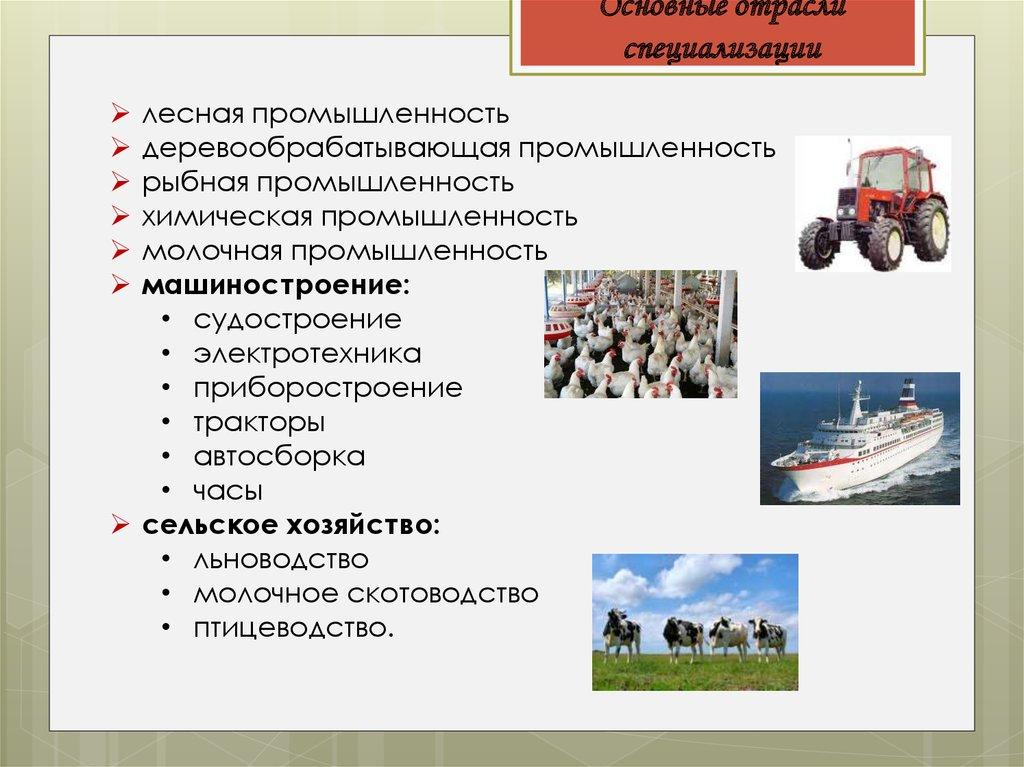 Характеристика экономических районов России :: Материалы ...