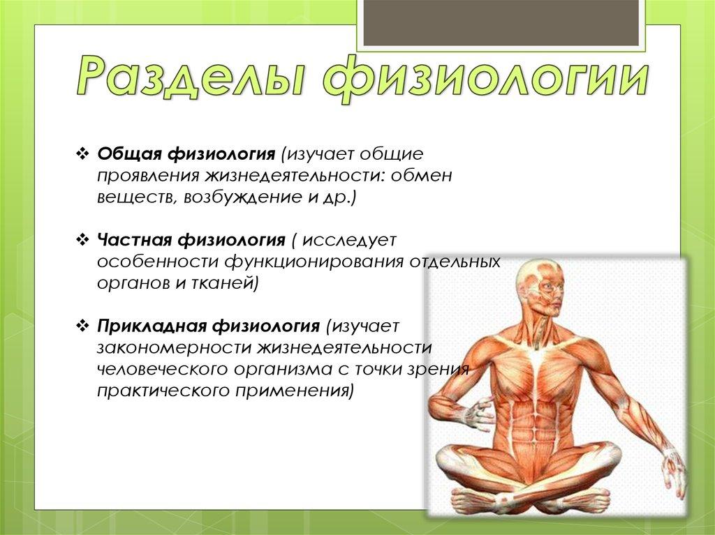 презентация по на тему человеческая физиология,болезни