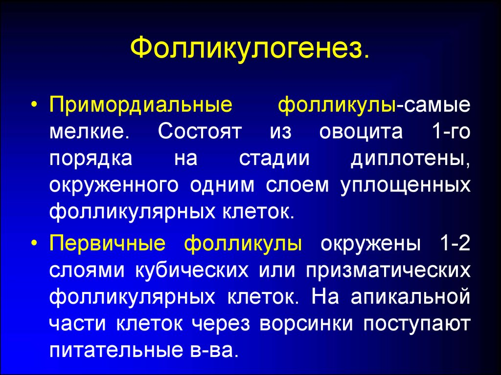 ГЛАВА 7 СПОСОБЫ УДЛИНЕНИЯ МУЖСКОГО ПОЛОВОГО ЧЛЕНА / Как ...
