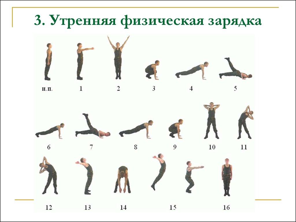 Утренние упражнения для мужчин в домашних условиях 309