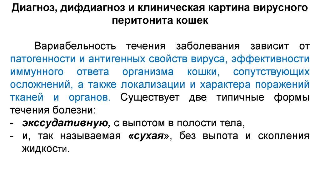 Пака Марк Вадимович  Ветеринарная клиника Белый Клык