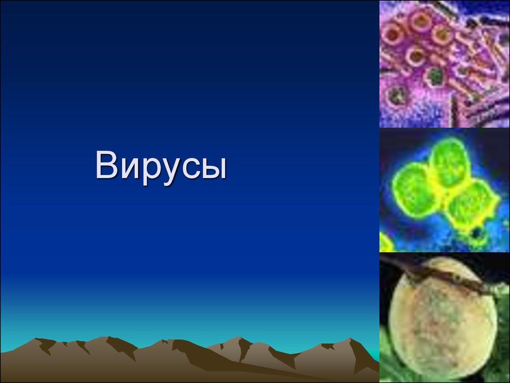 презентация по теме вирусы 6 класс