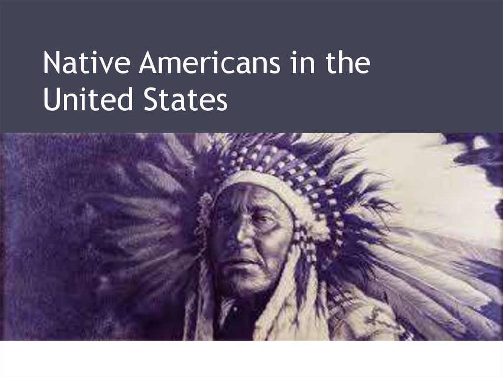American Indian/Alaska Native Education: An Overview