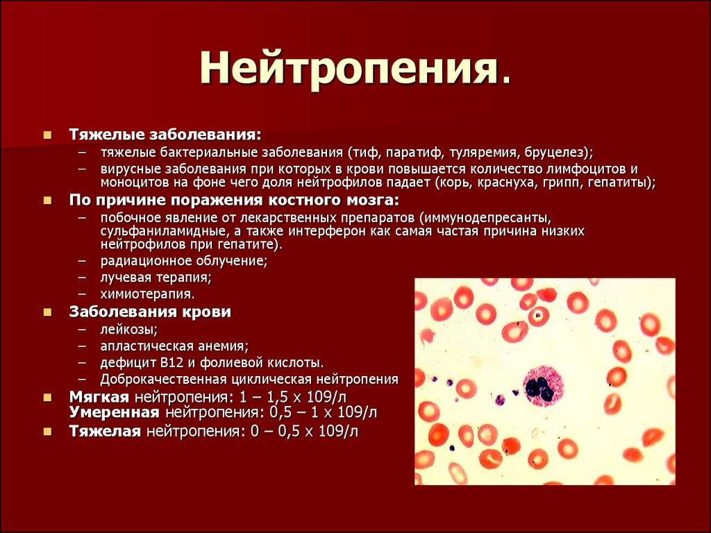 снижение сегментоядерных нейтрофилов в крови