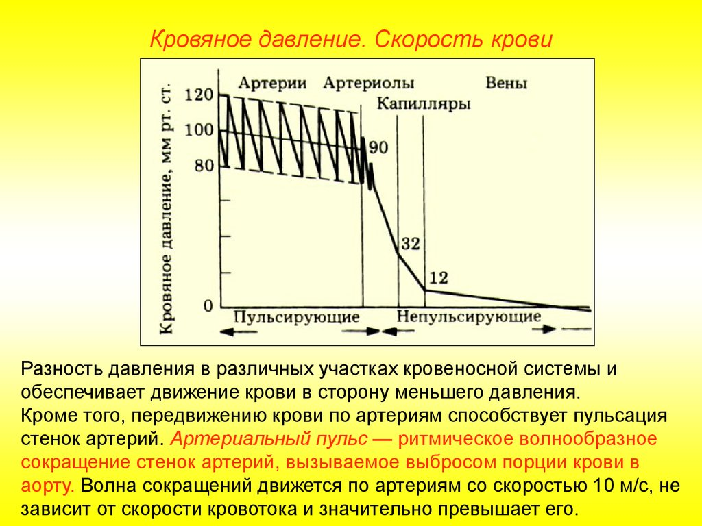 гипертония и гипотония презентация