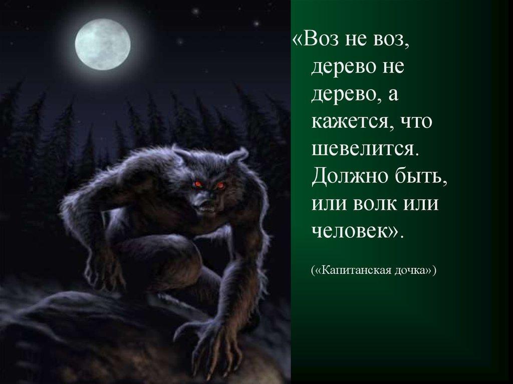 сочинение о сказках пушкина 5 класс
