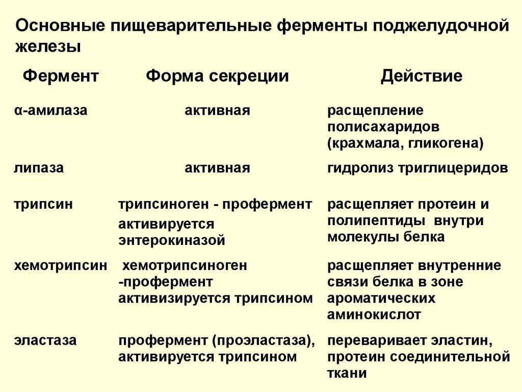 Профермент