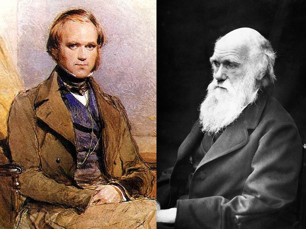 a life history of charles darwin the biologist Charles darwin - voyage aboard the hms beagle it was the research charles darwin did while aboard the hms beagle that formed the basis for his classic work, on the origin of species by means of natural selection, or the preservation of favoured races in the struggle for life ( origin of species ), published in 1859.