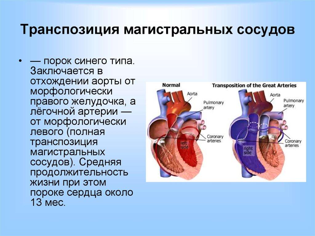 дефекты женских половых органов фото