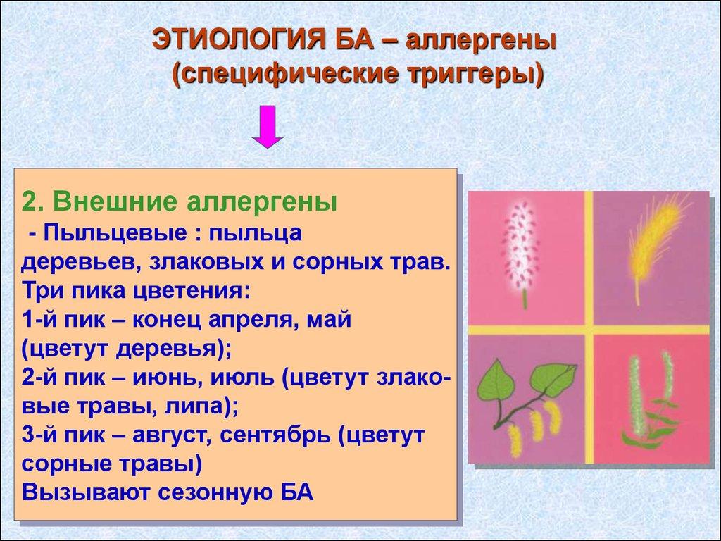 бронхиальная астма у детей лекция