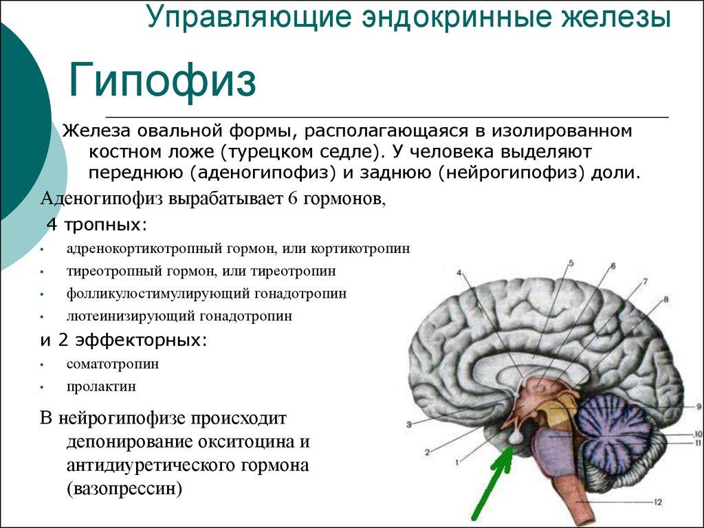 Кредит с плохой историей в Санкт-Петербурге — это возможно картинки