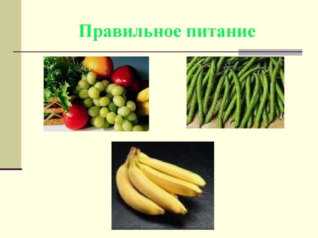 понятие здоровья здоровый образ жизни