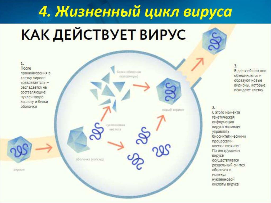 Санатории Подмосковья с лечением  Дом отдыха в