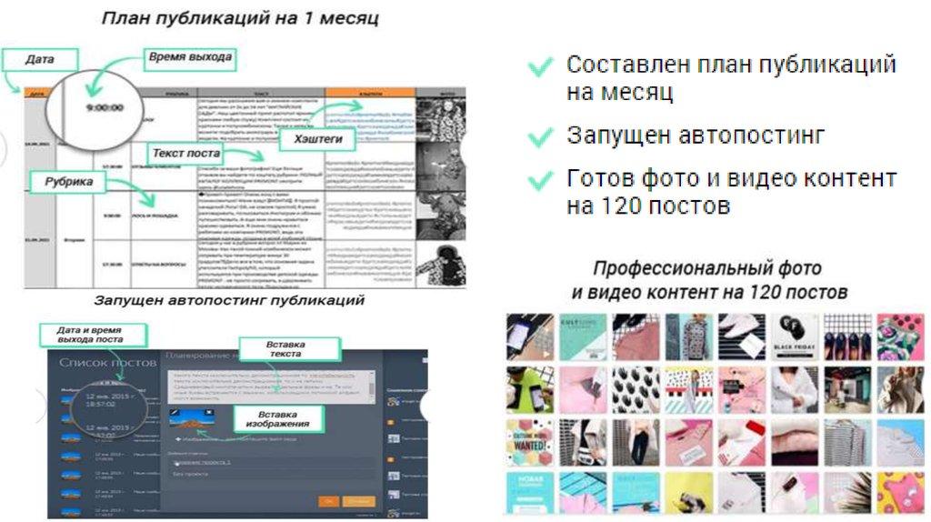 анализ seo сайта онлайн