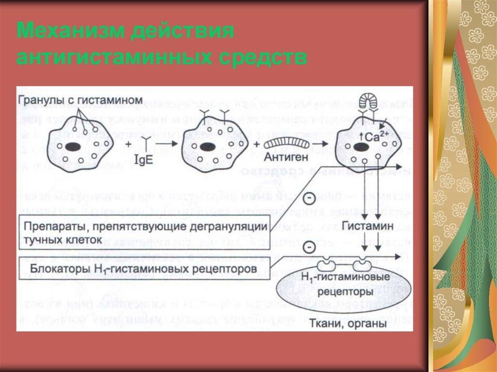 антигистаминные препараты при пищевой аллергии