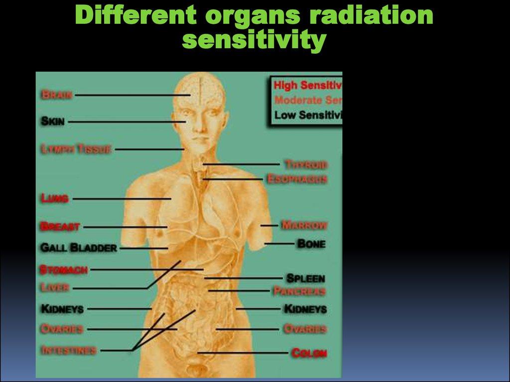 Ionizing radiation in medicine - презентация онлайн