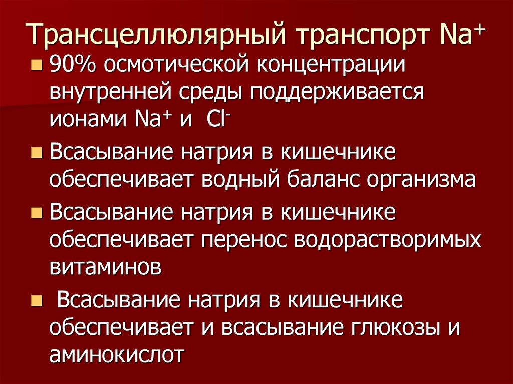 Противомикробные и противопаразитарные средства лекция image 3