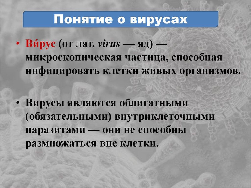 Конспект урока биологии 10 кл вирусы и бактериофаги