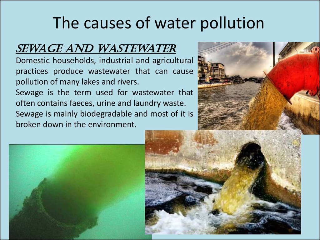 a study on the causes of water pollution Water pollution answer key vocabulary: bacterial pollution, nutrient 2 what are some other causes of water pollution answers will vary gizmo warm-up.