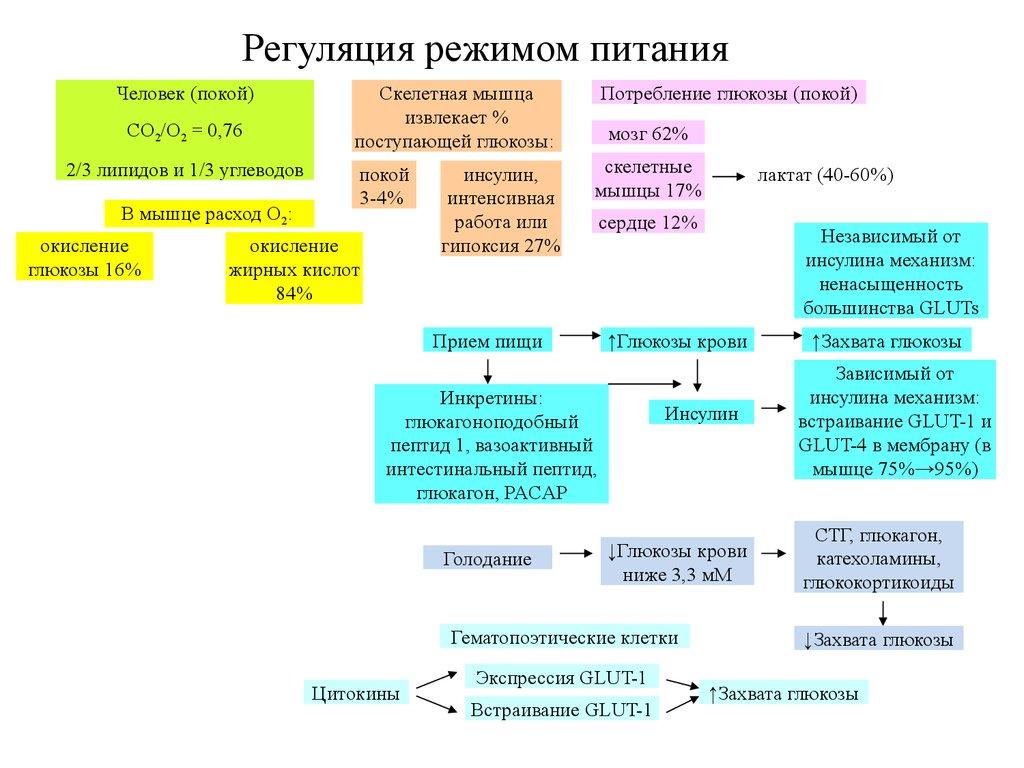 Карбоксилаза
