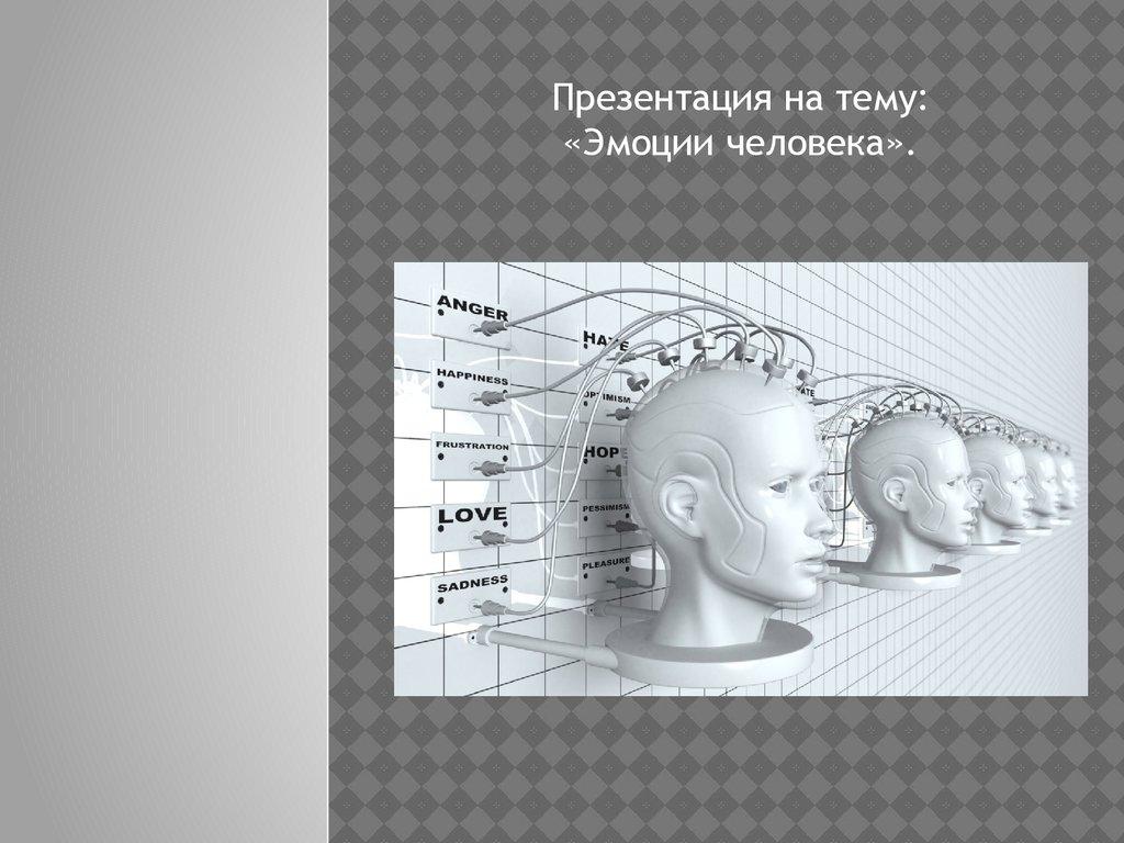 презентация на тему спинной мозг человека