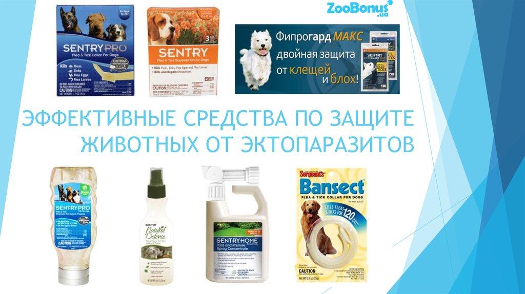 эффективные средства от паразитов всех видов