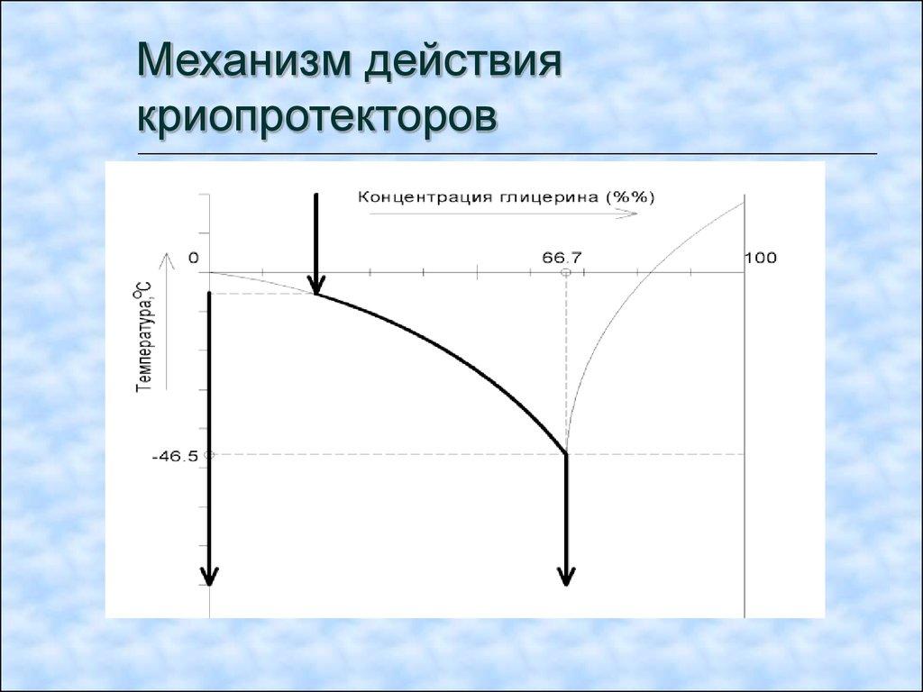pdf loss given default von mobilien