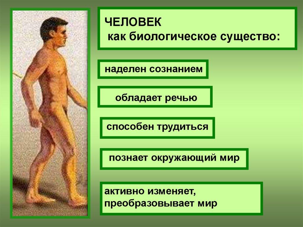 личность и социальная сфера реферат