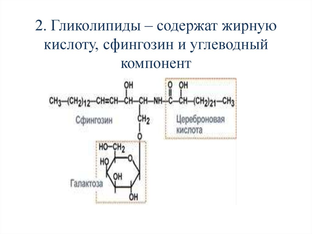 Сфингозин
