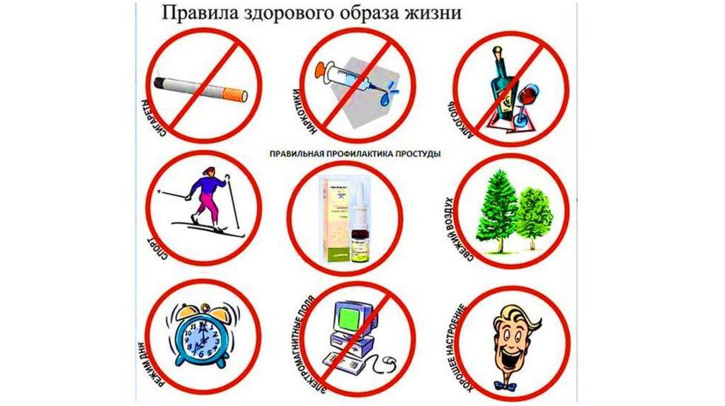 критерии здорового образа жизни