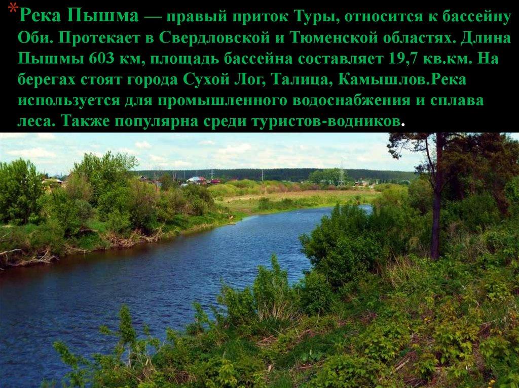 прогноз клева толстолобика в краснодарском крае