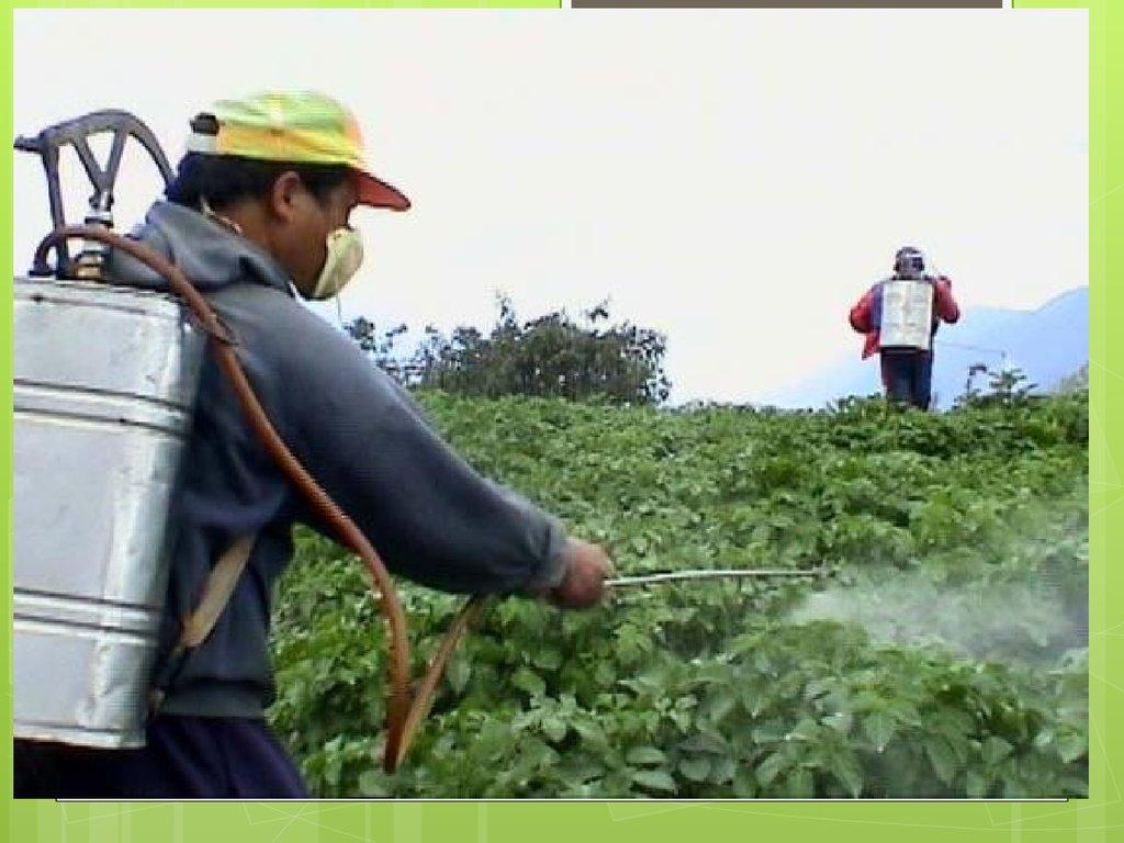 эколого химические проблемы водопользования реферат
