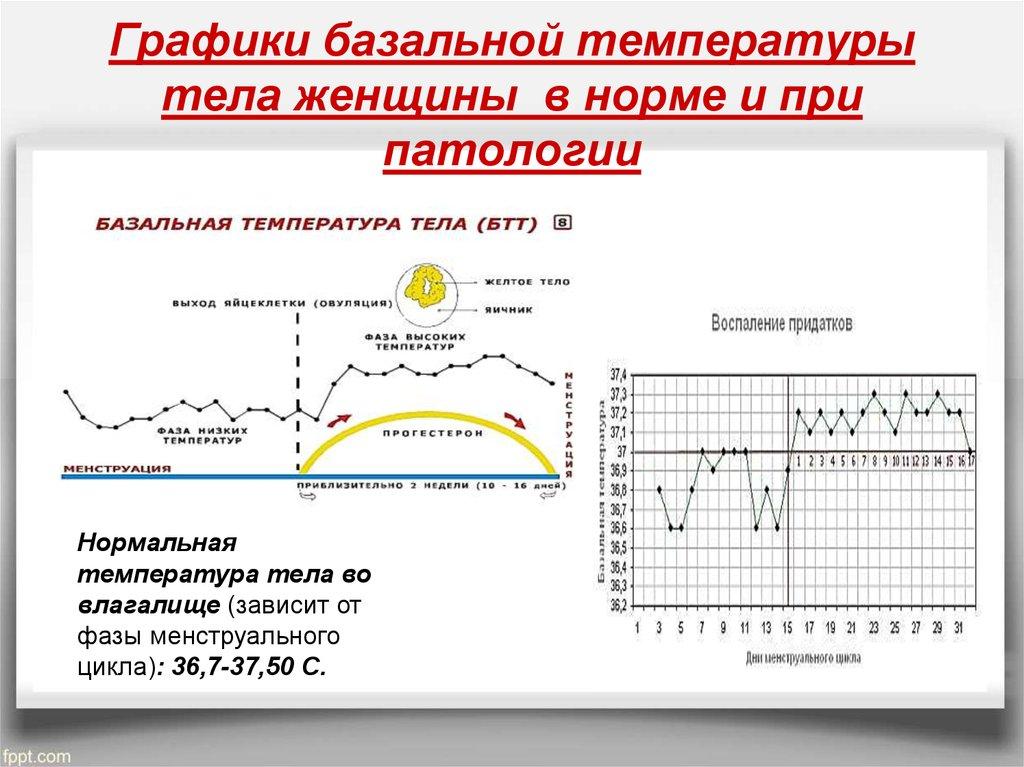 график завести измерение базальной