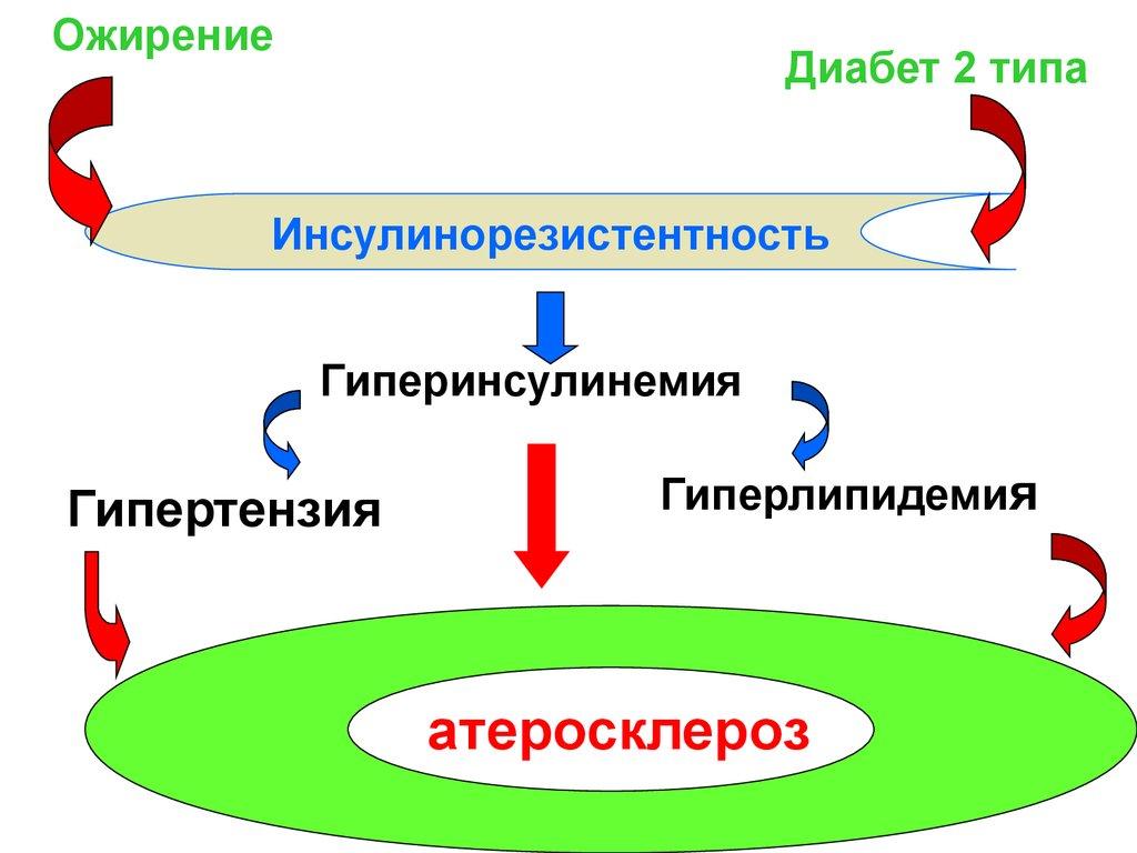 алексей ковальков диетолог ютуб