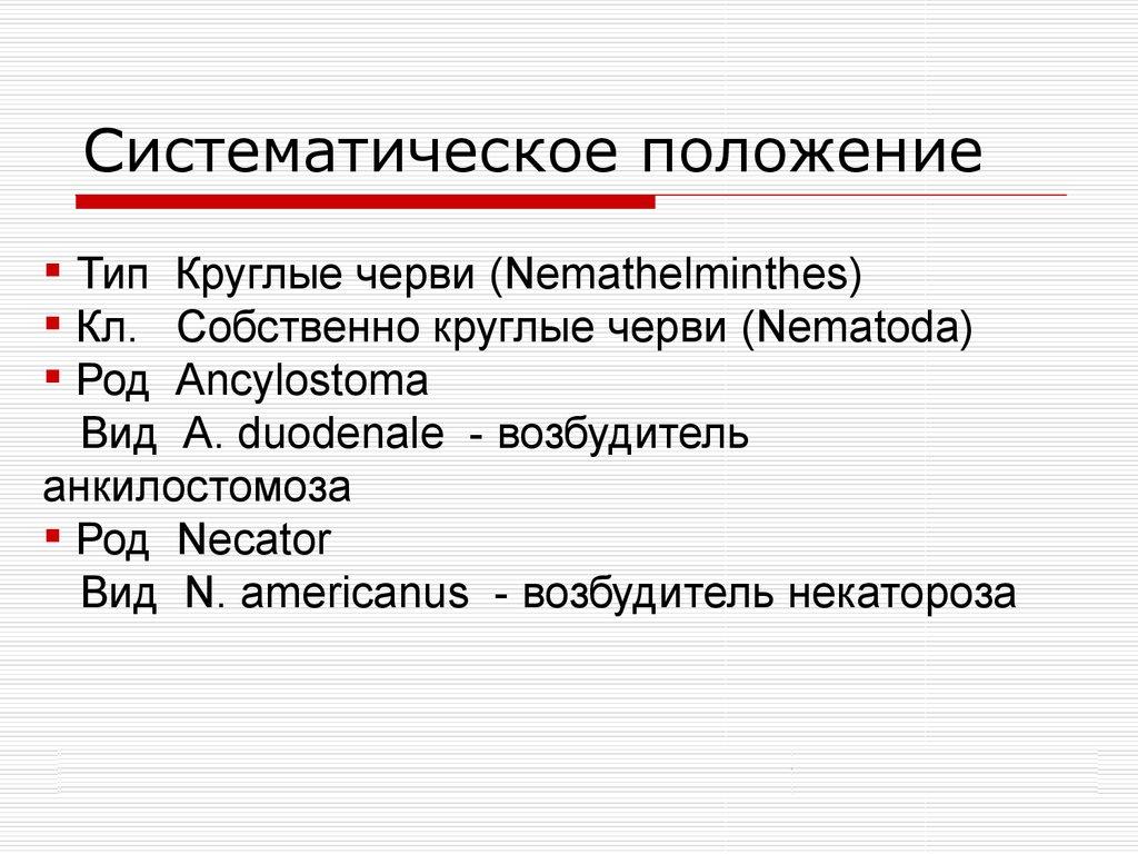 плоские черви паразиты человека и животных реферат