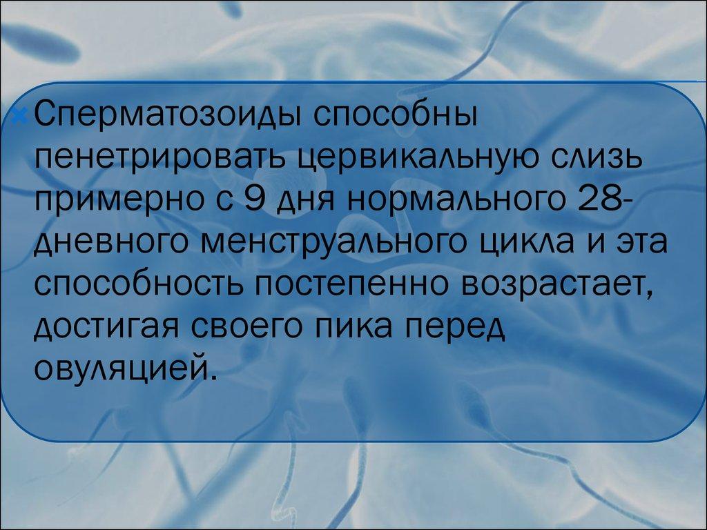 molodaya-delaet-mne-minet-chastnoe-foto