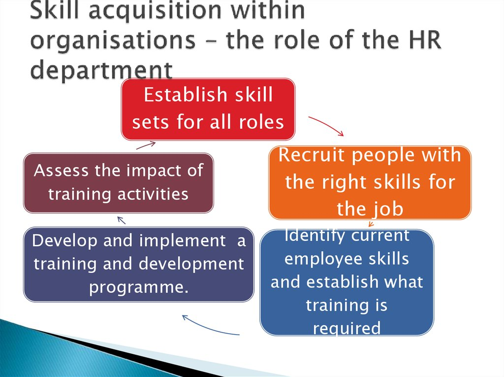 human resource management in business  skill acquisition in organisations the role of the hr department skill sets